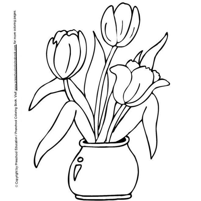 Sz nez k - Coloriage fleur tulipe ...
